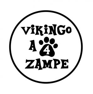 logo_vikingo